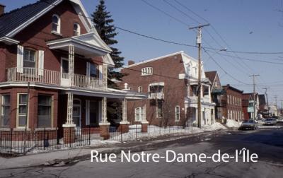 Rue notredamedelile